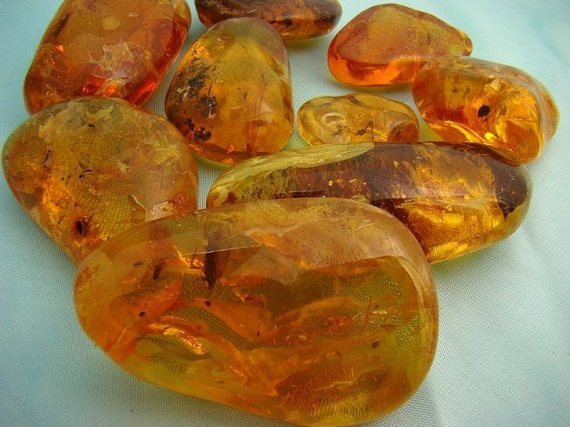 polished amber collerction