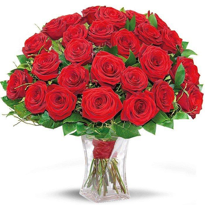 Rubine Roses